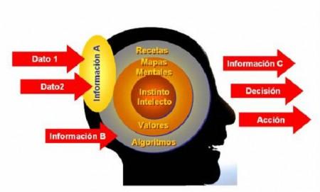 Proceso del conocimiento (2)